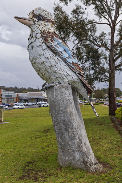 The Kurri Kurri Kookaburra at Rotary Park in Kurri Kurri